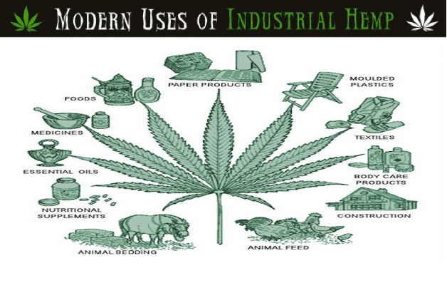 Hemporium-The-Global-Benefits-of-HEMP-Tony-Budden