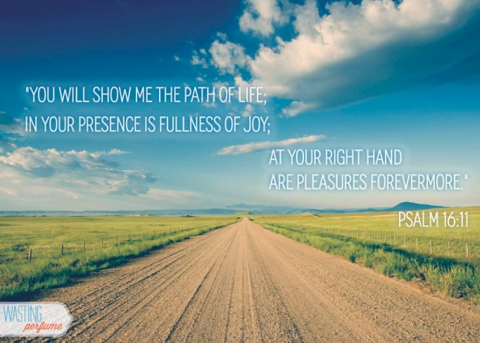 psalm 16, psalm 16:11, living life to the fullest, carpe diem, seize the day, peace, contentment
