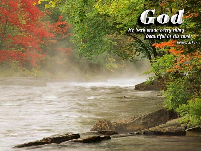 Ecclesiastes, 3:11, beautiful, in His time, waiting on the Lord, patience, waiting, burdens, trials, God, Lord, Jesus, trust, Christian, answers